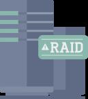 RAID servers